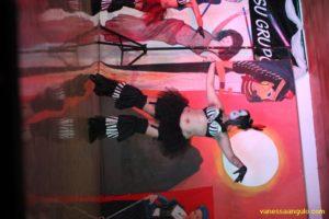 Hafla-Karaoke431